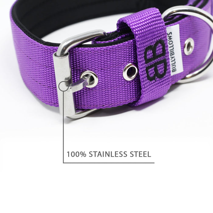 4cm Nylon Dog Collar - Purple v2.0