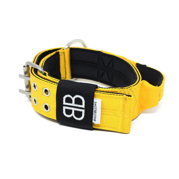 5cm Sporting Dog Collar - WITH HANDLE - Mustard Yellow