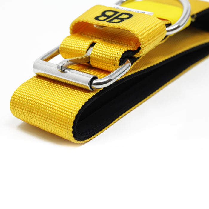 5cm Nylon Dog Collar - Mustard Yellow v2.0