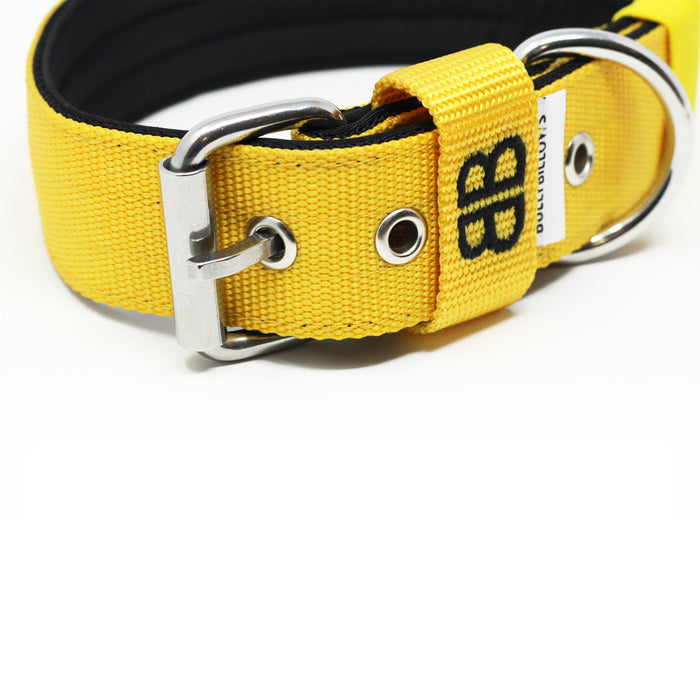 4cm Nylon Dog Collar - Mustard Yellow v2.0