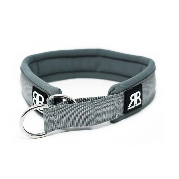 4cm RR - Metal Grey Dog Collar