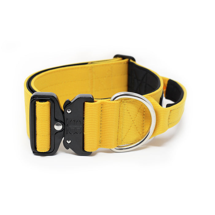 5cm Combat Dog Collar - Mustard Yellow v2.0