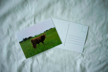 Load image into Gallery viewer, COW! - postcard