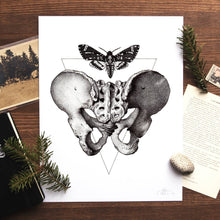 Load image into Gallery viewer, Acherontia Atropos / Os Pubis Print