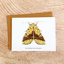 Load image into Gallery viewer, Pink Banded Sallow Moth - greeting card