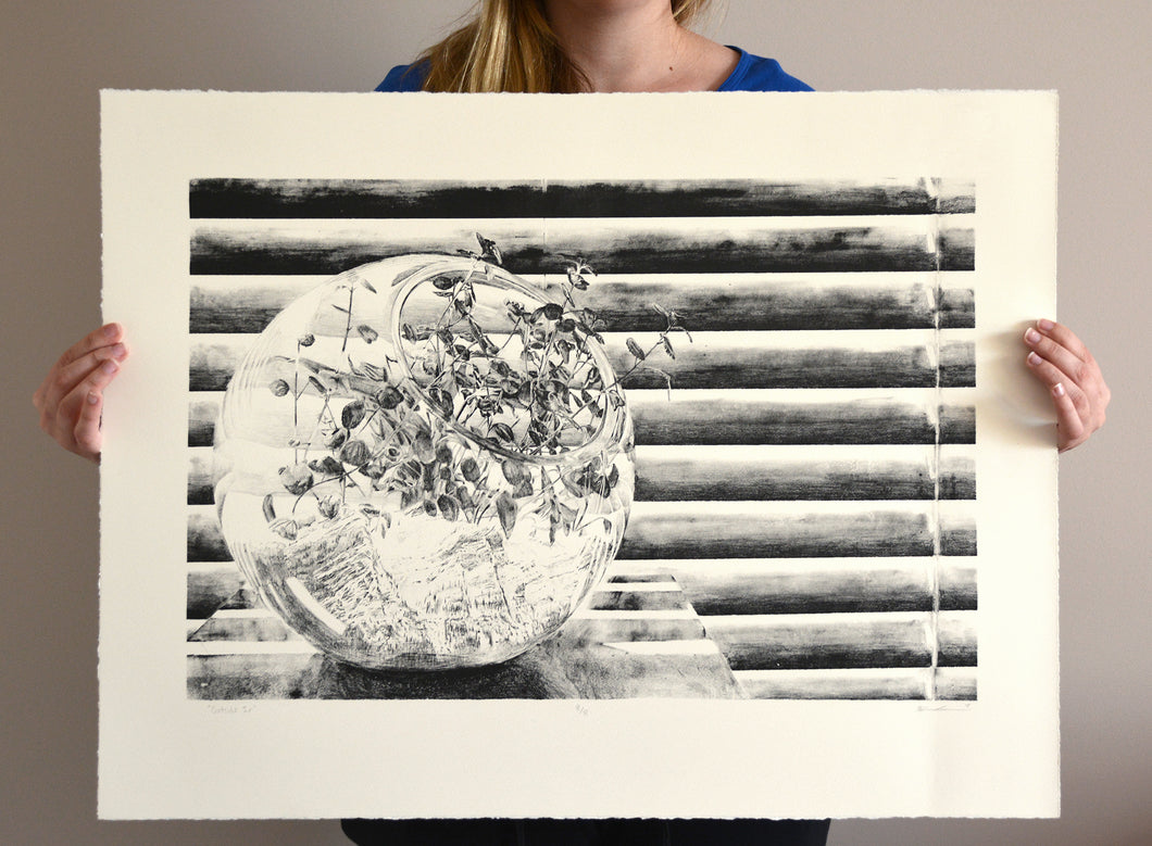 Outside In - Lithography Print - 22x29