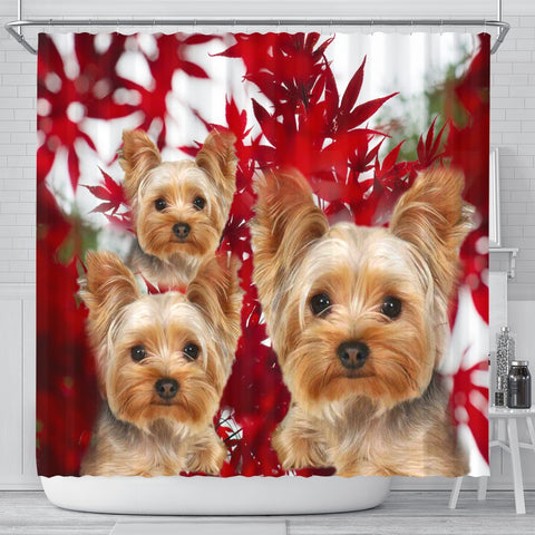 Yorkshire Terrier On Red Print Shower Curtains