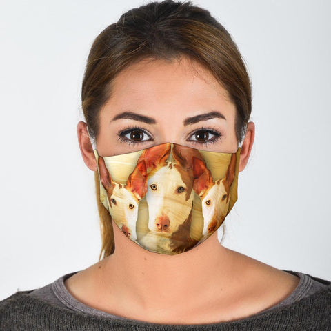 Ibizan Hound Print Face Mask- Limited Edition