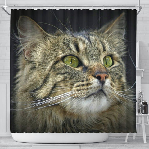 Amazing Norwegian Forest Cat Print Shower Curtains