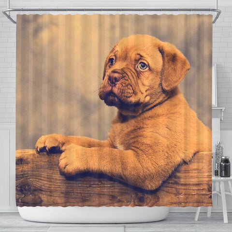 Dogue De Bordeaux (Bordeaux Mastiff) Puppy Print Shower Curtains