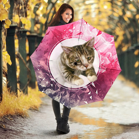 American Shorthairn Cat Print Umbrellas