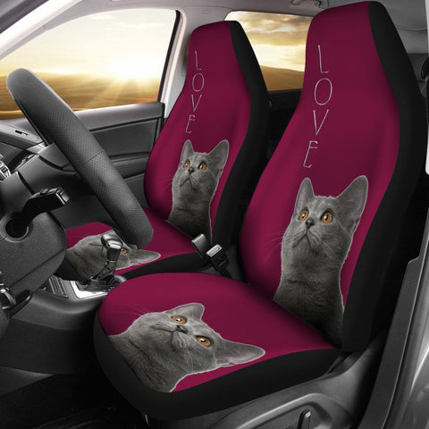 Chartreux Cat Print Car Seat Covers