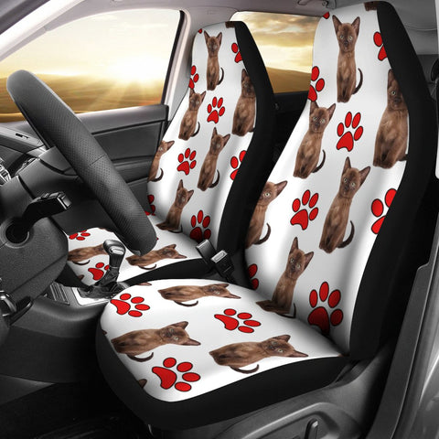 Burmese Cat With Red Paws Print Car Seat Covers