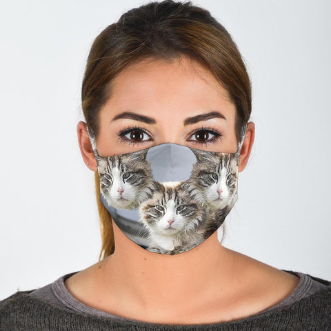 Ragamuffin Cat Print Face Mask