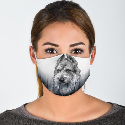 Berger Picard Print Face Mask- Limited Edition