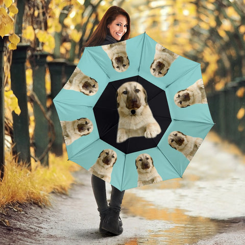 Anatolian Shepherd Dog Print Umbrellas