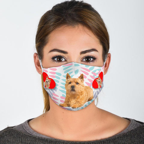 Norwich Terrier Print Face Mask