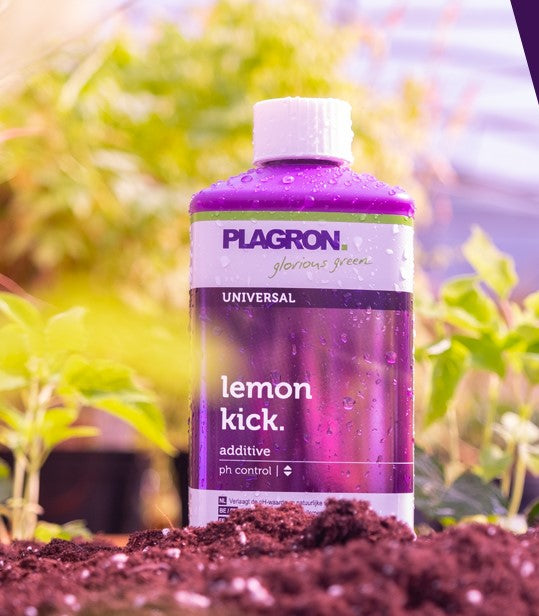 Lemon Kick BIO PH- Plagron