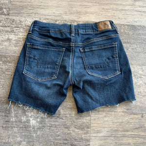 American Eagle Shorts // Size 2 (26)