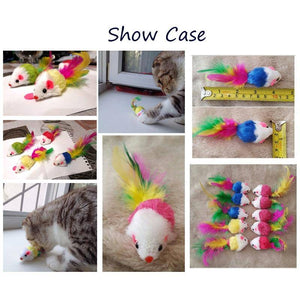 Colourful Feather Cat Toys (12 pack)