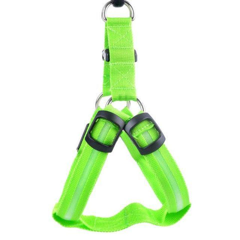 Image of LED Nylon Dog Harness