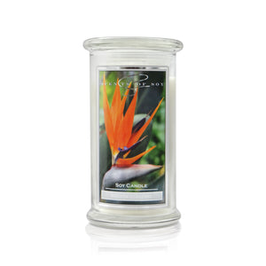 Bird of Paradise Soy Candle