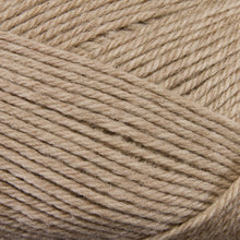Load image into Gallery viewer, Dizzy Sheep - Berroco Ultra Wool _ 33103 Wheat lot 7D5567