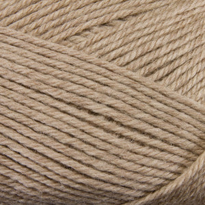 Dizzy Sheep - Berroco Ultra Wool _ 33103 Wheat lot 7D5567
