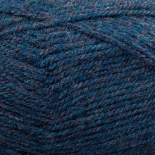 Load image into Gallery viewer, Dizzy Sheep - Plymouth Encore DK _ 0658 Blueberry Mix lot 76790