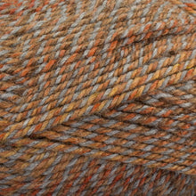 Load image into Gallery viewer, Dizzy Sheep - Plymouth Encore Worsted Colorspun _ 7172 Copper Drift lot 625060