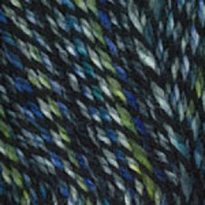 Dizzy Sheep - Plymouth Encore Worsted Colorspun _ 7807 Blue Green lot 625063