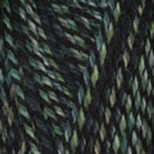 Load image into Gallery viewer, Dizzy Sheep - Plymouth Encore Worsted Colorspun _ 7810 Green Gray lot 625063