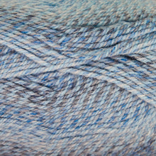 Load image into Gallery viewer, Dizzy Sheep - Plymouth Encore Worsted Colorspun _ 7827 Multi Blue Drift lot 625630