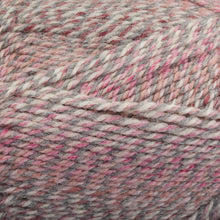 Load image into Gallery viewer, Dizzy Sheep - Plymouth Encore Worsted Colorspun _ 7990 Raspberry Drift lot 628259