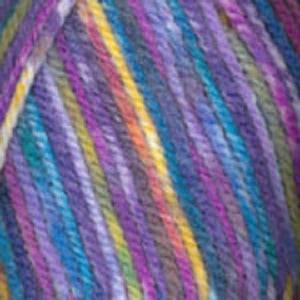 Dizzy Sheep - Plymouth Encore Worsted Colorspun _ 8004 Rainbow lot 628260