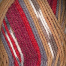 Load image into Gallery viewer, Dizzy Sheep - Plymouth Encore Worsted Colorspun _ 8125 Southwest Mix lot 56807