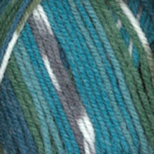 Load image into Gallery viewer, Plymouth Encore Worsted Colorspun