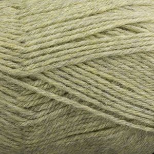 Dizzy Sheep - Plymouth Galway Worsted _ 0748 Pistachio Heather lot 4855