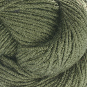 Dizzy Sheep - Plymouth Worsted Merino Superwash _ 045 Forest lot 06079