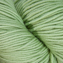 Load image into Gallery viewer, Dizzy Sheep - Plymouth Worsted Merino Superwash _ 069 Primavera lot 375115
