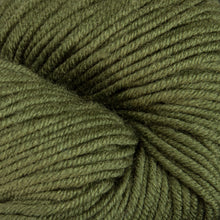 Load image into Gallery viewer, Dizzy Sheep - Plymouth Worsted Merino Superwash _ 078 Pesto lot 74666