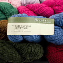 Load image into Gallery viewer, Dizzy Sheep - _Plymouth Worsted Merino Superwash