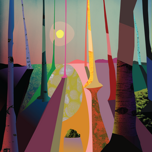 Birch Forest – Signed Limited Edition Print