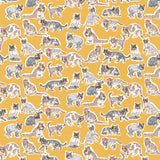 Liberty Fabrics Tana Lawn: Willoughby Mews (B)