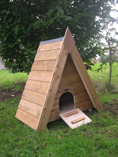 Triangular Duck House