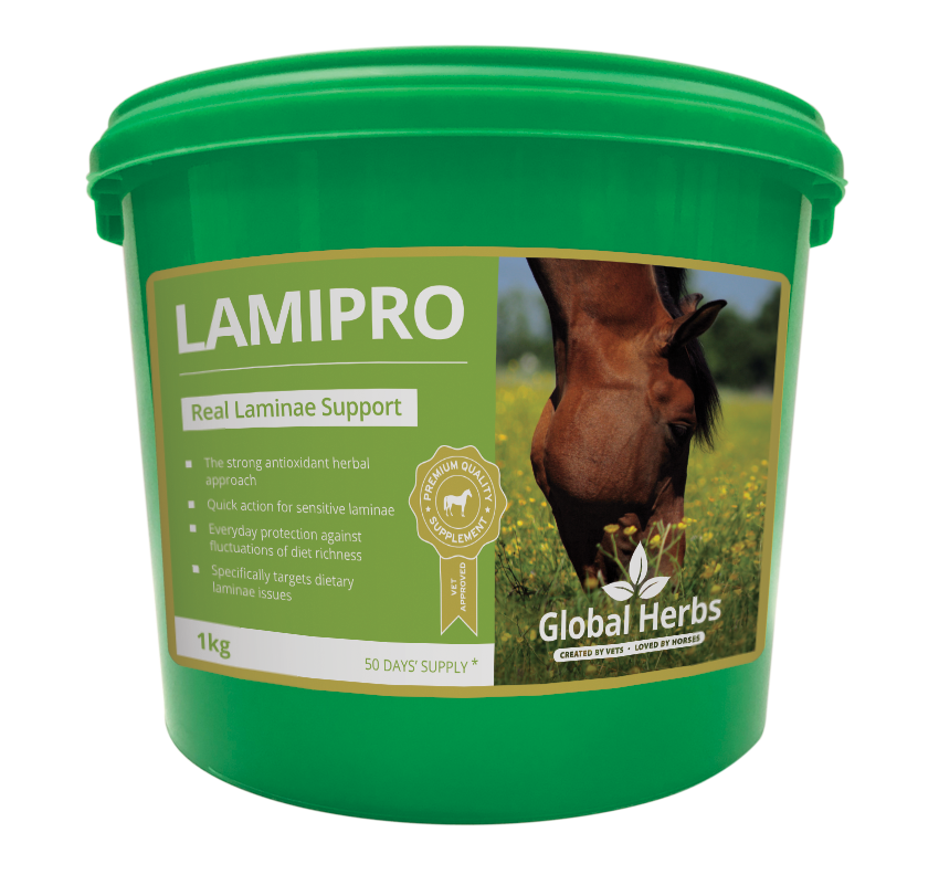 Global Herbs LamiPro Powder 1kg
