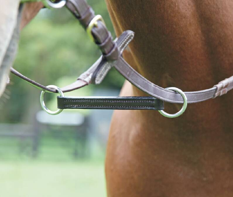 Shires Blenheim Irish Martingale