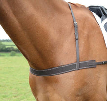Load image into Gallery viewer, Shires Blenheim Elastic Breastgirth