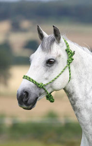 Shires Rope Control Headcollar