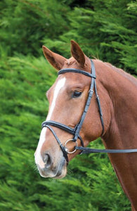 Shires Aviemore Raised Flash Bridle
